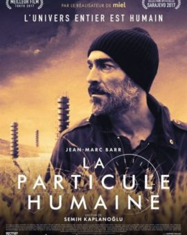 Grain, la particule humaine